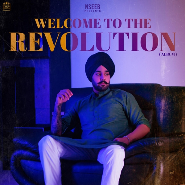 Welcome To The Revolution Nseeb free download full album in mp3 formats mp3 songs